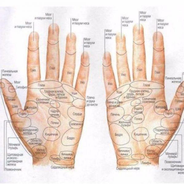 рефлекторный массаж кистей рук